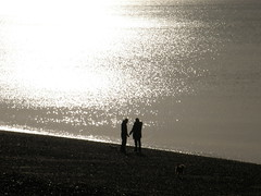 Hold My Hand... (Annie in Beziers) Tags: sea dog chien sun reflection beach water silver couple shine hove pebbles romance sparkle holdinghands plage contrejour dogwalkers annieinbziers