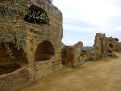 Valle dei Templi (7)