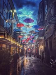 Anne's lane, Dublin (janetmeehan) Tags: street city travel ireland dublin rain streetphotography streetscene rainy umbrellas