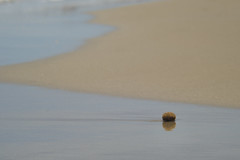 Nufrago (amofer83) Tags: sea espaa costa sun beach landscape sand exterior sunny playa paisaje arena murcia jupiter minimalism abstracto f4 lamangadelmarmenor 135mm minimalista 2016 soleado 11a