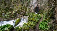 Somiedo Natural Park - Asturias - Spain (PhotoGSuS) Tags: espaa mountain snow forest spain nieve asturias unesco bosque biospherereserve montaa somiedo asturies naturalpark parquenatural reservadelabiosfera