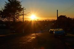 Fitzroy Street Sunrise (Bryan Gellatly) Tags: sunrise southauckland