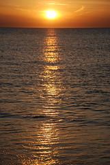 THE SINKING SUN (photodittmer) Tags: ocean sunset sea sun color reflection gold evening capecod massachusetts