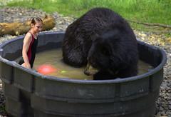 Playing In The Tub (swong95765) Tags: bear water girl fun kid play tub blackbear cooling
