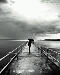 the girl on the pier.. #blackandwhite #lake #clouds #rain #umbrella #landscape #landscape_lovers #eos600d #canon #pier #lago #trasimenolake #trasimeno #umbria #people #streetphotography #streetphoto_bw #bw #bw_lover #bw_society #bnw_life #bnw_captures #ig (fabriziobelia) Tags: blackandwhite bw lake clouds canon square squareformat trasimeno iphoneography eos600d instagramapp