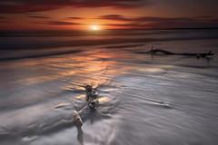 Cala la sera, le strade del mare si tingono di color rubino (Salvatore Brontolone) Tags: wood sunset red sea water tramonto mare arena reflective ramo riflessi bacoli spiaggia sabbia crepuscolo torregaveta