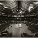 The St. Louis Arena: Looking Back