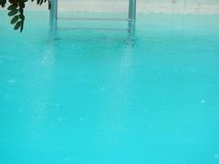 Rainstorm (starmist1) Tags: pool leaves rain aqua swimmingpool rainstorm ladder minimalist