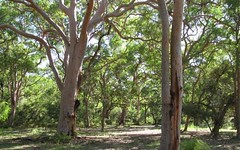 186 Beach Road, Mitchells Island NSW