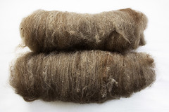 Dried Leaves (chavala) Tags: knitting spinning batts batts2016