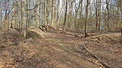 Trail at Patapsco Valley State Park (SchuminWeb) Tags: park county wood trees tree public forest march md woods state ben path howard web parks trails maryland dirt trail valley area paths recreation areas forests patapsco elkridge 2016 patapscovalleystatepark schumin schuminweb