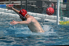 AW3Z8357_R.Varadi_R.Varadi (Robi33) Tags: summer men sports water swimming ball fight action basel swimmingpool watersports waterpolo sportspool waterpolochampionship