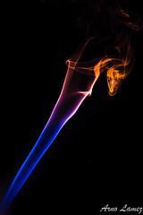 IMG_0998.jpg (arnolamez) Tags: studio smoke flash fumee strobist colorgel canon6d yongnuo removedfromstrobistpool incompletestrobistinfo seerule2