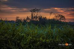 paisaje no tradicional (alan benchoam) Tags: travel sunset puerto guatemala jungle sabana travelphotography monterrico benchoam alanbenchoam perhapsyouneedalittleguatemala
