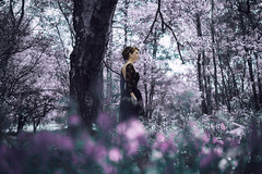 Now That They've Found Us (Jessica-H-Ingram) Tags: blue portrait black fashion fairytale forest woodland photography woods purple jessica handmade lavender h lilac conceptual sorrow ingram