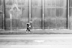 it's called summer (gato-gato-gato) Tags: street leica summer bw white black film blanco monochrome analog 35mm person schweiz switzerland flickr noir suisse strasse zurich negro streetphotography pedestrian rangefinder human streetphoto monochrom zrich svizzera weiss zuerich blanc ilford m6 manualfocus analogphotography schwarz ch onthestreets passant mensch sviss leicam6 zwitserland isvire zurigo filmphotography streetphotographer homedeveloped fussgnger manualmode zueri strase filmisnotdead streetpic messsucher manuellerfokus gatogatogato fusgnger leicasummiluxm35mmf14 gatogatogatoch wwwgatogatogatoch streettogs believeinfilm tobiasgaulkech