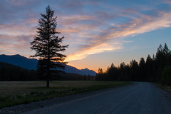 Sunset over the meadow. (Patstirling) Tags: world road ranch trip travel blue camping trees sunset orange plants plant nature field grass silhouette night clouds dark landscape landscapes purple outdoor dusk logging columbia wife british winding depth radium gravel hotsprings fav25 2470mmf4l canon70d