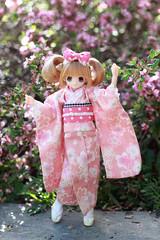 Cheerful Pink (sherimi-chan) Tags: doll secretgarden chisa azone pureneemo excute