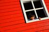 DSC_0658e (chupoptero) Tags: windows playground boat brightred