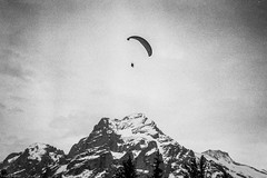 alps I (Karo Krmer) Tags: schweiz suisse alpen alps eiger paragliding schirm schwarzweis rollei35t 35mm analog blackandwhite monochrom berg mountain albrechtvonhaller