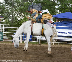 Blythewood Rodeo 2016-70 (Perry B McLeod) Tags: sc cowboys barrel bull racing bulls riding rodeo cowgirl calf saddle bronc blythewood roping ipra