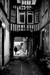 Passage (flo74.) Tags: street city blackandwhite bw woman dog chien town noiretblanc femme nb normandie ruelle rue normandy ville colombages promeneur pontaudemer