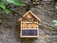 Htel gratuit pour insectes !!!! (MAPNANCY) Tags: maison mur bois insectes branche htel feuillage