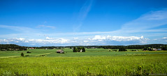 Rural green & blue (Joni Mansikka) Tags: blue trees summer sky green nature june clouds suomi finland landscape outdoor sheds halikko tamronspaf2875mmf28xrdildasphericalif