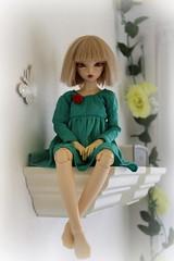 Rita (giddykipper/debra) Tags: bjd fairyland msd minifee rheia dresszetsuaiparanoiastrawberrycupcake