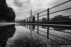 Paris under water II (karmajigme) Tags: travel blackandwhite paris reflection water monochrome landscape nikon noiretblanc eiffeltower toureiffel