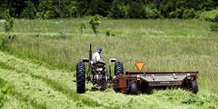 Field work slower (hz536n/George Thomas) Tags: summer copyright tractor rural canon michigan farm canon5d hay upnorth prescott 2016 ogemawcounty cs5 ef300mmf4lisusm
