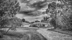 Stormy Day BW ( julev69  1,900,000+ Views- THANK YOU!) Tags: road trees blackandwhite house nature rain weather clouds outdoors florida ominous seasonal stormy julev69 julieeverhart