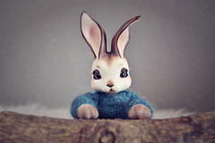Boreal (Yuki~AstridDreams) Tags: cute bunny sweater conejo bjd mascotas boreal mueca peppi holic sueter balljoineddoll bjdoll hdoll cocoriang