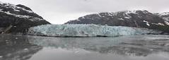 Margerie Glacier_Glacier Bay_Alaska_DSC_5365_stitch_2_D (renrut01) Tags: old blue panorama usa cold ice alaska bay glacier calving margerie