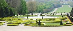 IMG_4465 (Irina Souiki) Tags: parcdesceaux france paris sceaux flowers nature parc park