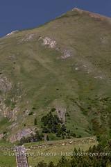 Andorra landscape: La Massana, Vall nord, Andorra (lutzmeyer) Tags: altdelacapa2572m andorra arinsal cg5 cs520 canoneos5dmarkiii comallemplacomarca europe gebirge iberia iberianpeninsula lamassanaparroquia lutzmeyer pirineos pirineus pyrenees pyrenen riudelcovilarinsal berg berge bilder fotos frhjahr frhling gebirgszug hauptstrasse iberischehalbinsel imagen images imatges june juni junio juny landscape landschaft lutzlutzmeyercom mainroad montana montanas mountain mountains muntanyes natur natura nature paisaje paisatge parroquia photography photos pic pics pictures primavera rural rutaciclista10arinsal schild sonnenaufgang sortidadelsol spring springtime sunrise vallnord lamassanavallnord