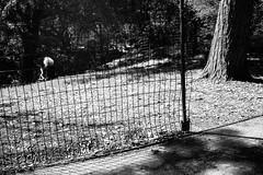 XT1-06-03-15-712-2 (a.cadore) Tags: fujifilmxt1 fujifilm xt1 zeissbiogon28mmf28 biogont2828 zeiss carlzeiss newyorkcity nyc uptown uws riversidepark landscape blackandwhite bw candid