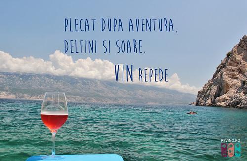 citate celebre despre vin citat cu vin   a photo on Flickriver citate celebre despre vin