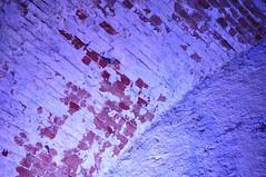 Kasematid (anuwintschalek) Tags: summer june austria keller sommer exhibition 40mm cellar niedersterreich kelder stadtpark suvi interiour kasematten 2016 wienerneustadt micronikkor nikond90 munitionslager vlvid laskemoonaladu kasematid