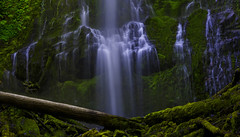 Proxy Falls (Willamette NF, OR) (Sveta Imnadze.) Tags: summer oregon proxyfalls sisterswilderness willamettenf