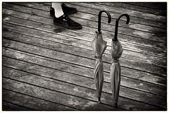 A Break in the Rain (Claus Tom) Tags: street blackandwhite bw umbrella copenhagen denmark candid border streetphotography cph umbrellas toned kbenhavn toning