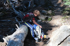 Aiden stops for an equipment adjustment (rozoneill) Tags: sky lake cold liza rock creek forest river spring elizabeth lakes fremont trail national wilderness rogue siskiyou winema trailhead isherwood notasha