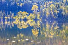 3:30 (stevenbulman44) Tags: shadow summer lake reflection green canon britishcolumbia tripod filter lilly gitzo 70200f28l