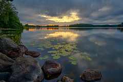 Tunevannet (Bent Velling) Tags: tunevannet sarpsborg stfold norge norway norwegen landscape waterscape sunset water reflections trees clouds colors serene outdoor beautiful rocks flowers sonya6000 samyang12mm bentvelling