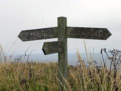 BEMP001 (Jacqi B (catching up)) Tags: uk england yorkshire signpost birdsanctuary bemptoncliffs eastriding jacqistravels travelswiththetrumans bigtrip2014
