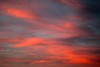 Red sunset (Zelda Wynn) Tags: sunset weather avondaleclouds troposphere red cloudscape clouds auckland bright zeldawynnphotography