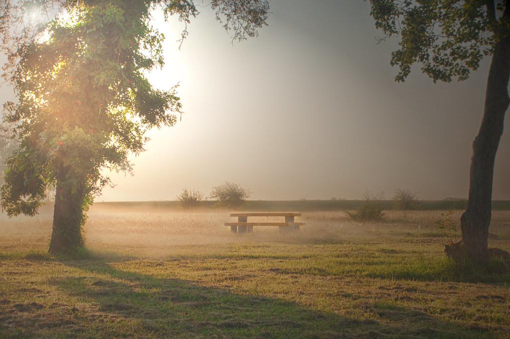 Eternity-Rose Hill Park-Port Arthur Texa by fast turtles, on Flickr