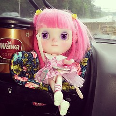 Ginny Pinkles on her first road trip.