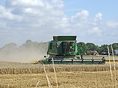 It's Harvest time again. (Alan By The Sea) Tags: summer fuji farm wheat harvest sunny machinery f30 crop combine dust harvester dscf4153a