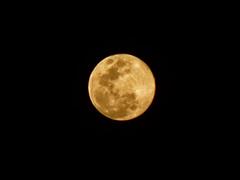 Full Moon (Diego3336) Tags: brazil sky moon brasil night lowlight saopaulo skylight luna fullmoon craters astrophotography lua astronomy nightsky bluemoon redmoon tonightsmoon moonwatch moonzoom fullsturgeonmoon fullredmoon augustbluemoon